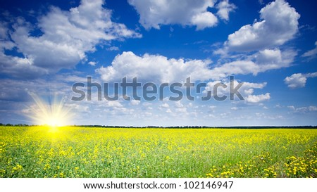 Vibrant rapefield and cloudscape. - stock photo