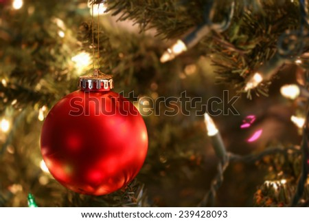 Vibrant red ornament hanging in Christmas tree - stock photo