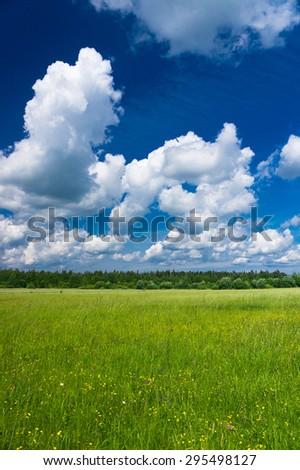 Vibrant Springtime Plain Nature  - stock photo