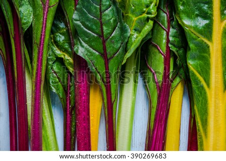 Vibrant vegetable, swiss rainbow chard, flat lay on wooden table from overhead. - stock photo