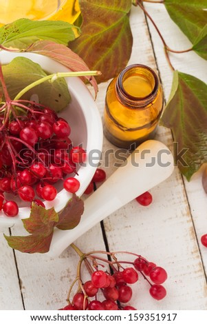 Viburnum  and bottle with medicines  on white table. Concept of homeopathy. Selective focus. - stock photo