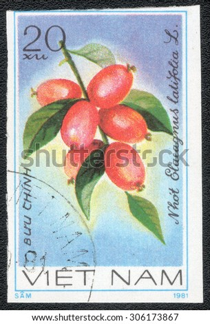 "VIETNAM - CIRCA 1981 : A stamp printed by Vietnam shows a series of images ""Edible berries"", circa 1981 - stock photo"