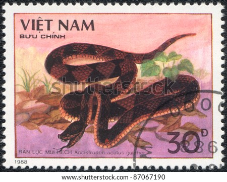 VIETNAM - CIRCA 1988: A stamp printed in VIETNAM  shows  a Ancistrodon acutus  gunther, series, circa 1988 - stock photo