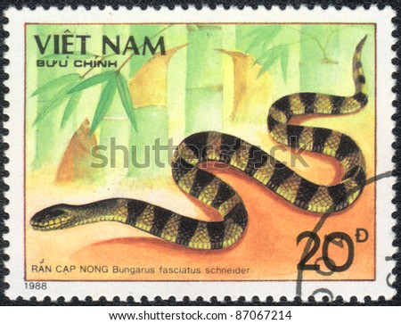 VIETNAM - CIRCA 1988: A stamp printed in VIETNAM  shows  a Bungarus fasciatus schneider, series, circa 1988 - stock photo
