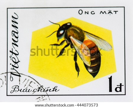 VIETNAM - CIRCA 1982: A stamp printed in Vietnam shows Insect Ong Mat, circa 1982 - stock photo