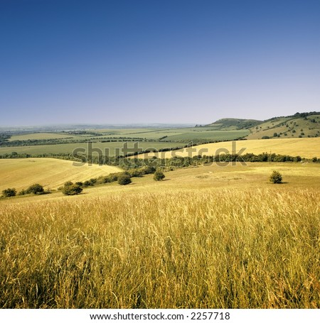 view across cornfield agricultural landscape crops harvest - stock photo