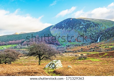 View across the Coedydd Aber National Nature Reserve in Snowdonia. - stock photo