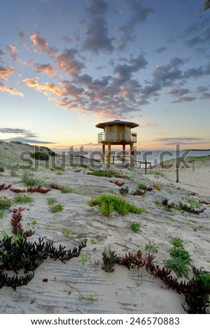 View across the sand dunes to the Wanda Beach surf life guard tower at sunrise.  Plants including Ice plant - Carpobrotus edulis in the foreground. - stock photo