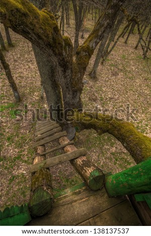 View from a mossy treehouse - stock photo