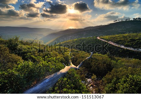 View from a mountain in Israel - stock photo