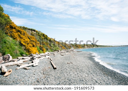 View from Beach of Clover Point Park in Victoria, BC Canada - stock photo