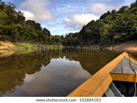 View from the boat at Amazon river, with a dense forest on the shore and blue sky, Anazonas, Brazil - stock photo