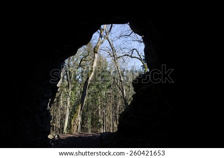 View from the inside of the cave into the forest - stock photo