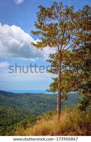 view from the mountain in Samui island - stock photo