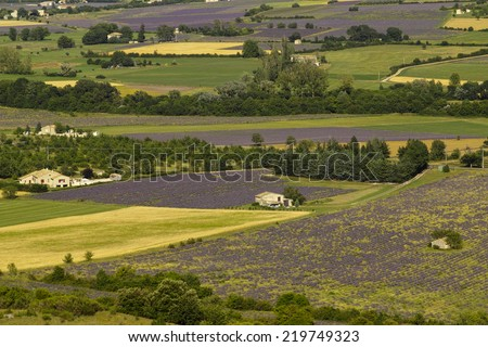 View from the pass street over the provencal fields to sault - stock photo