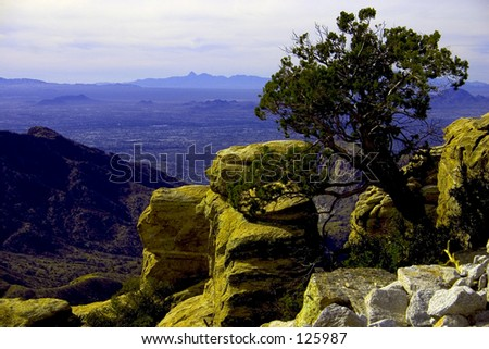 View from top of Mount Lemmon Arizona - stock photo