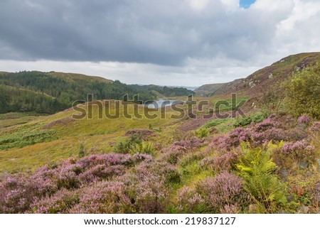 View into the Highlands and over a small Loch in Scotland - stock photo