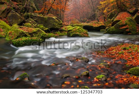 View of a beautiful autumn creek in Czech-Saxony Switzerland, panoramic picture. - stock photo