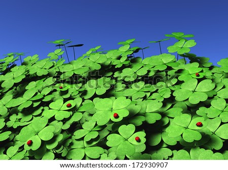 view of a group of four-leaf clovers of different height and dimensions with some ladybugs on their leaves, on a blue sky background - stock photo