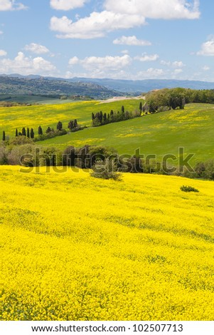 View of a Typical Tuscany Landscape in Spring time - stock photo