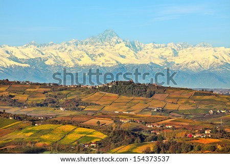 View of autumnal hills with vineyards and snowy mountain peaks on background in Piedmont, Northern Italy. - stock photo