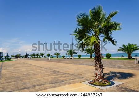 View of Batumi Boulevard - stock photo