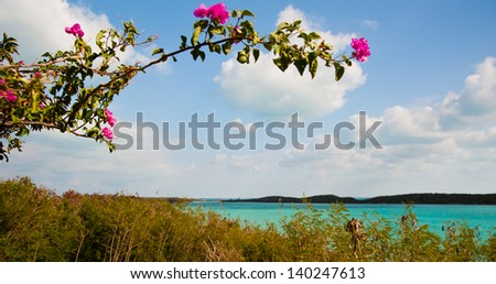 View of beautiful tropical waters framed by a bougainvillea branch and flowers.  copy space available - stock photo