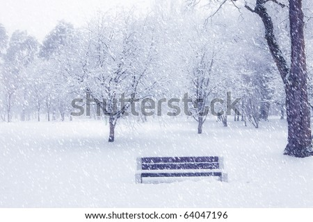 View of bench and trees through snowing. Blue tone. - stock photo