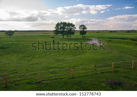 View of Biebrza national park - stock photo