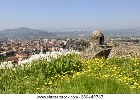 view of blossoming iris flowers over the top of the ramparts at ancient Castle , shot on a sunny spring day with the hilly inland in background, Sarzana, Italy  - stock photo