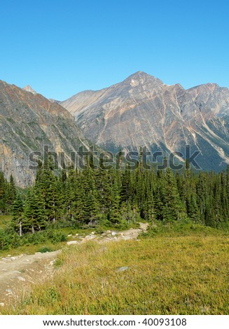 View of canadian rocky mountains and meadow from the hiking trail beside mountain edith cavell, jasper national park, alberta - stock photo