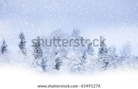View of christmas trees through snow. Blue sky, snowflakes, trees, fog. - stock photo