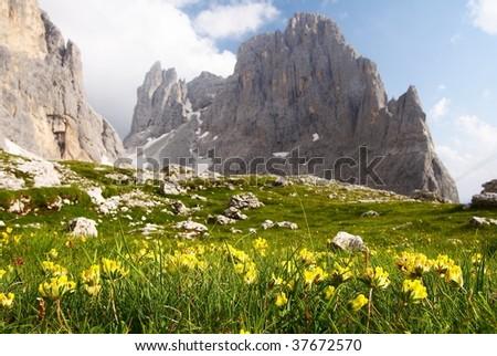 view of cima della madonna in pale di san martino - dolomiti italy - stock photo
