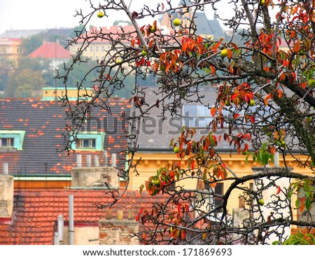 View of colorful autumn Prague City - stock photo