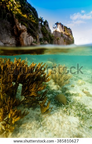 View of coral reef underneath and cliff caves above waterline in Caribbean Sea - stock photo