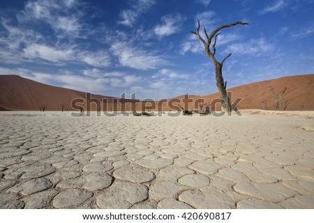 View of Dead valley in Namib desert, Sossusvlei, Namibia - stock photo