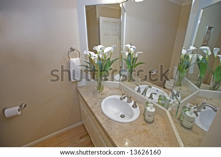 View of downstairs bathroom in luxury house - stock photo