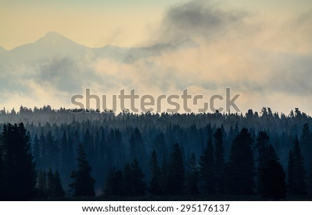 View of Forest Mountain at Yellow Stone National Park - stock photo