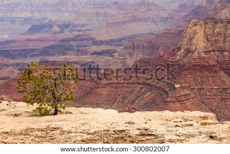 View of Grand Canyon from South Rim with sunset light - stock photo