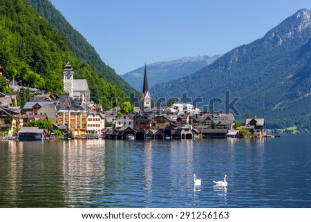 View of Hallstatt city with two mallard ducks in the lake and blue sky background, Austria - stock photo