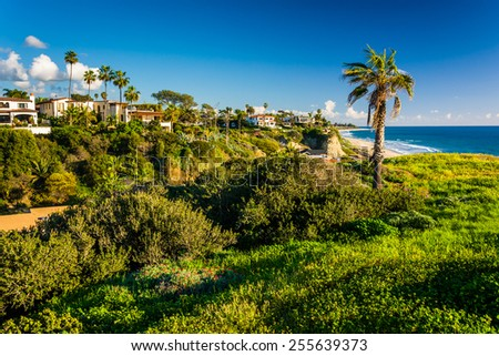 View of houses and the Pacific Ocean from a cliff in San Clemente, California. - stock photo