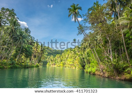 View of  jungle green river Loboc at Bohol island of Philippines - stock photo