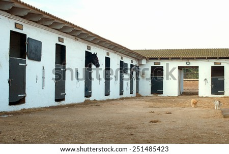 View of modern stables with horses. - stock photo