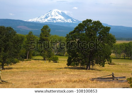 View of Mount Adams from Trout Lake, Washington - stock photo