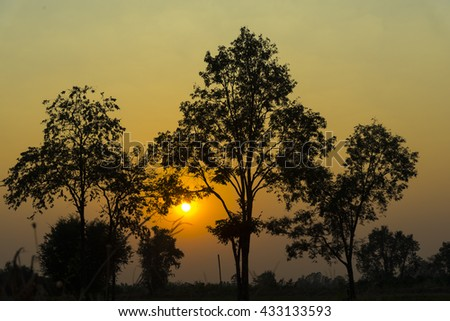 view of natural resource in tropical rain forest, Khao Yai National Park, Thailand - stock photo