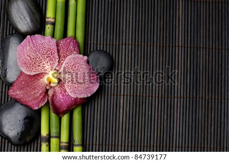 View of red orchid with thin bamboo grove and stones on bamboo mat texture - stock photo