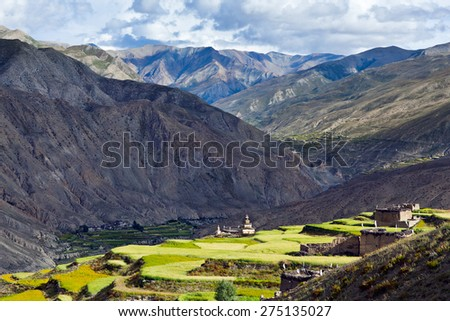 View of Saldang village over fields in the Nepal Himalaya. Saldang lies in Nankhang Valley, the most populous of the sparsely populated valleys making up the culturally Tibetan region of Dolpo. - stock photo