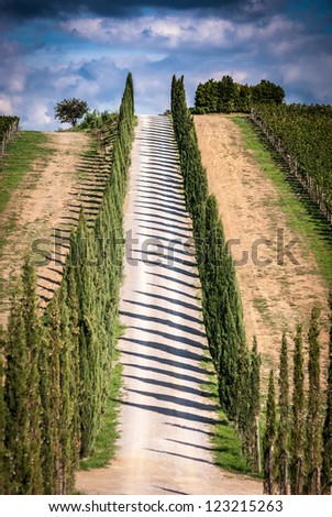 View of scenic Tuscany landscape with road and cypress alley, Chianti region, Tuscany, Italy - stock photo