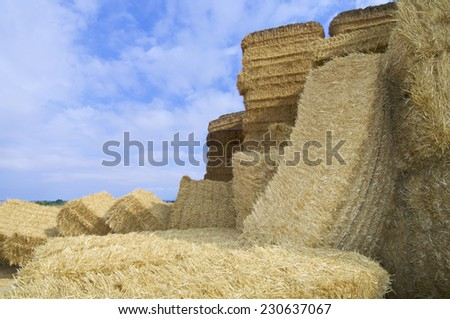 View of straw bales group on a farmland - stock photo