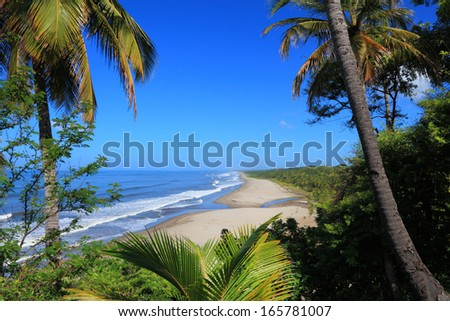 view of the beach through the palm trees - stock photo